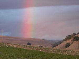 A rainbow over our Paso Robles Ranch
